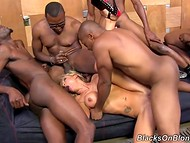 Insatiable Zoey Portland with huge boobers didn't mind hanging out with five black homies