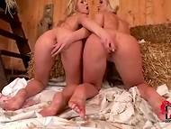 Две светловолосые дамочки суют самотыки друг дружке в пилотки в сарае