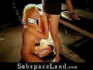 Привязанная на BDSM манер тёлочка была отшлёпана плёткой и её ротик вскоре наполнился спермой мужика