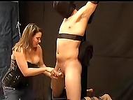 Привязанному мужичку нравится чувствовать себя беззащитным в руках шаловливой мадам, подрачивающей его стояк