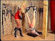 Imperious blonde lifts chained legs of submissive guy up to spank his buttocks to redness