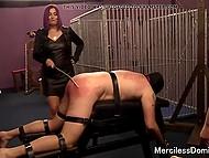 Властная госпожа и её мускулистая подруга шлёпают покорного раба до покраснения