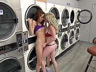 Laundry became a shelter for hungry for fucking blonde who broke bad having sex with a redhead
