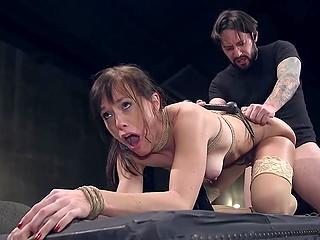 Порноактриса Alana Cruise и бородатый мужик разыгрывают БДСМ сцену, где её ебут в задний проход