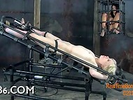 Hot blonde slut with small tits gets fucked upside down by fucking machine
