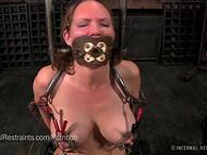 Onda kille uppbundna sin tik i källaren och torterade henne med el