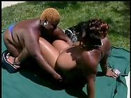 Чёрные дамочки с огромными титьками ублажают друг друга на улице