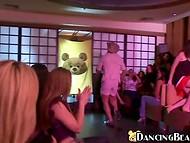 Treener ja tema taltsutada tantsimine kandma valmis riba seaduse naissoost publikule